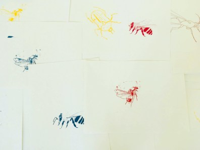 Design Luminy Martin-Lefebvre-Dnsep-2018-17 Martin Lefebvre - Dnsep 2018 Archives Diplômes Dnsep 2018  Martin Lefebvre   Design Marseille Enseignement Luminy Master Licence DNAP+Design DNA+Design DNSEP+Design Beaux-arts