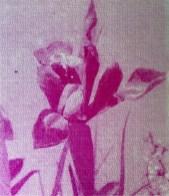 Design Luminy Jade-rousset-erasmus-2-18 Jade Rousset – École Massana – Barcelone Barcelone École Massana Séjours Erasmus Work in progress  Textile motif Massana Jade Rousset