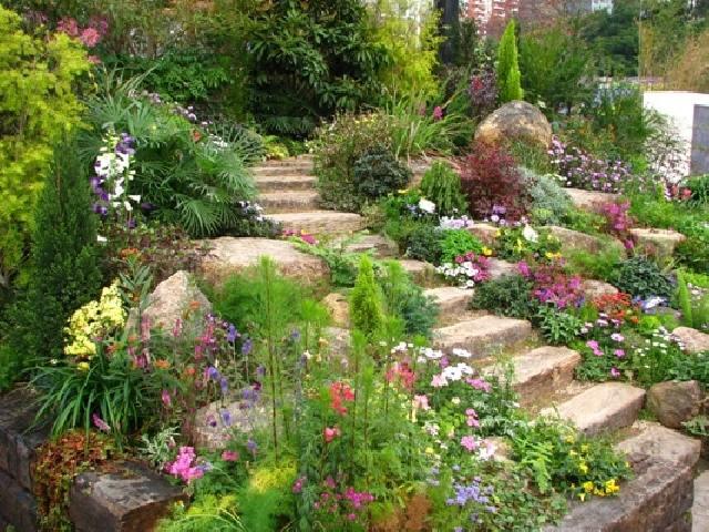 Des Pierres Decoratives Pour Amenager Votre Jardin