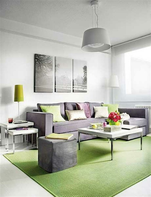 Decoration De Salon Moderne En Vert Et Gris 20 Exemples