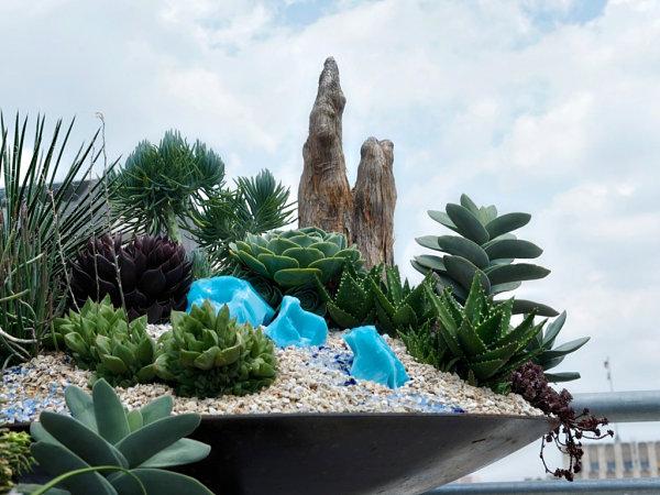 Pots Design DIY Pour Plantes Grasses Ou Succulentes