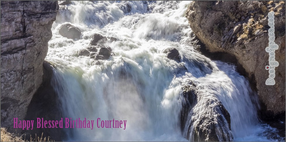 Happy Blessed Birthday Day Courtney<br /> <br /> Thought this photo I took at Yellowstone National Park in America would be perfect for your Birthday card:)