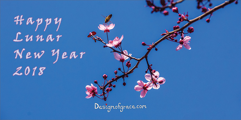 Blue sky with pink cherry blossoms with words Happy Lunar New Year
