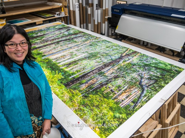 Me next to a massive 3 x 1.4m canvas of the Karri Forest for my client before it's being stretched