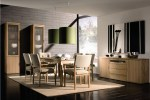 Contemporary Dining Room Ideas TnaF