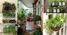 Balcony Garden Ideas Uk
