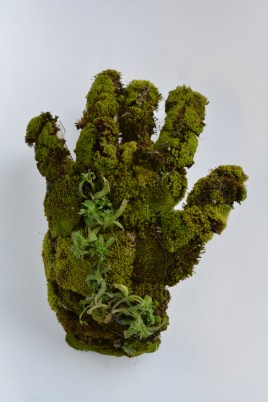 Hand covered in moss