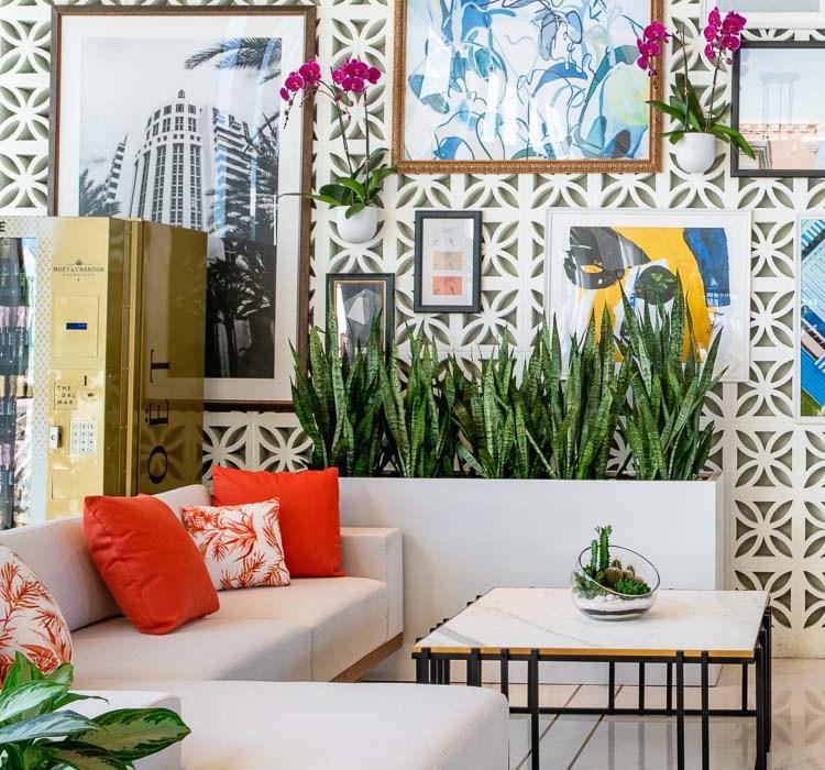 The Dalmar Hotel: A Hip Tropical Oasis