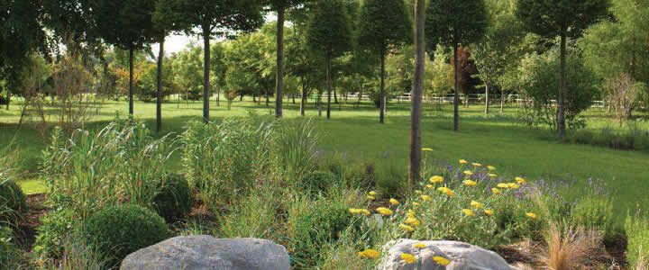 Garden 2 Lucknam Park