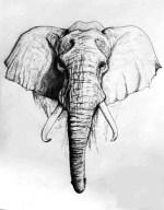 Laser Engraving Elephant Free Vector