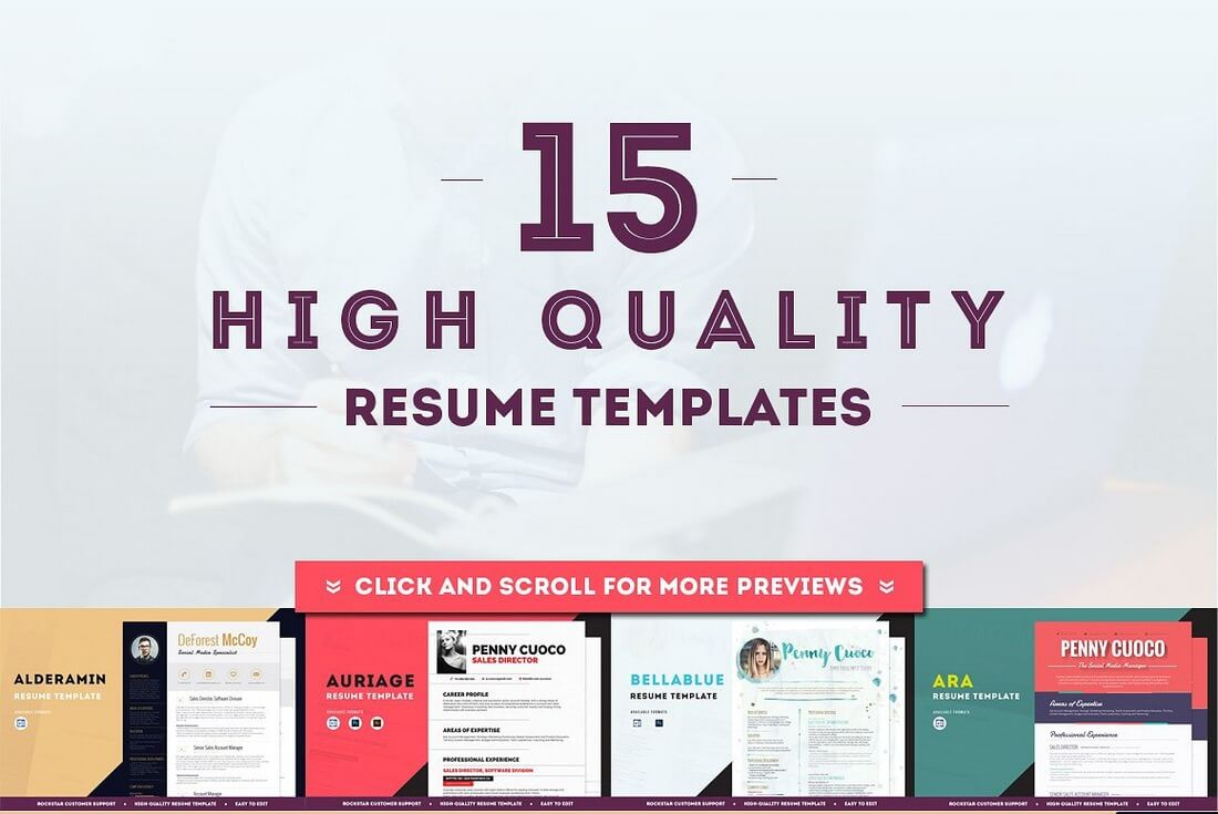 The Best CV & Resume Templates: 50 Examples 32