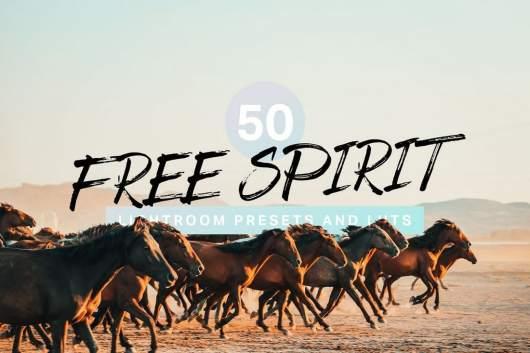 50 Free Spirit Lightroom Presets