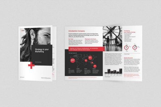 Bifold Corporate Business Brochure