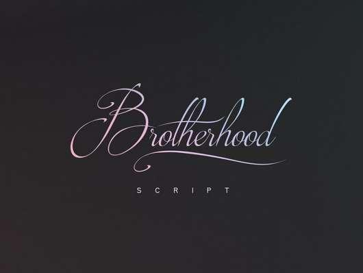 Brotherhood Free Script