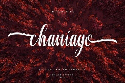 Chaniago Natural Brush