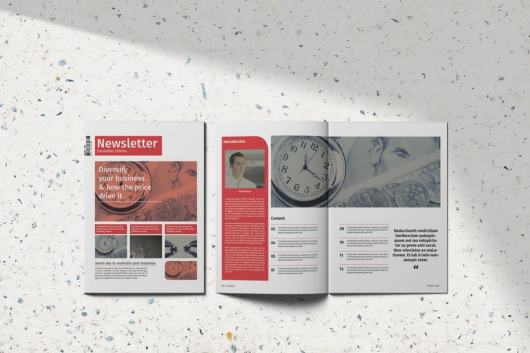 Creative Business InDesign Newsletter