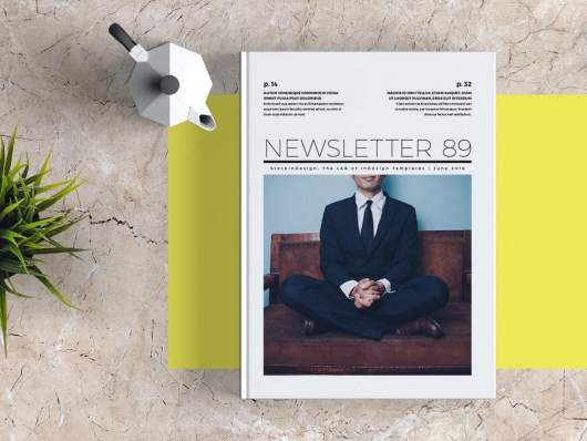Free Business InDesign Newsletter Template