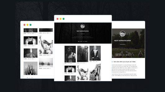Next-Premium-Tumblr-Theme