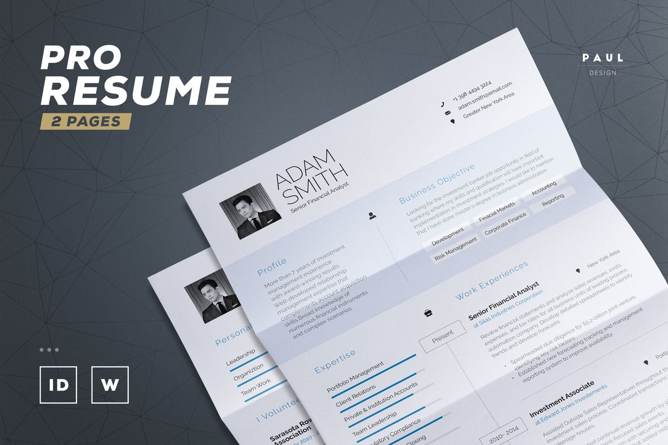 The Best CV & Resume Templates: 50 Examples 9