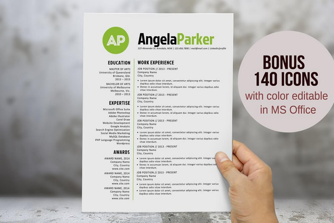 The Best CV & Resume Templates: 50 Examples 29