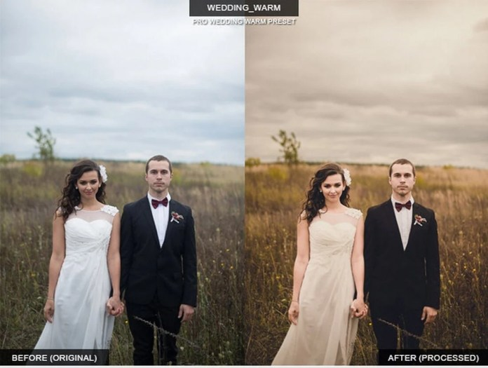 warm-wedding-preset