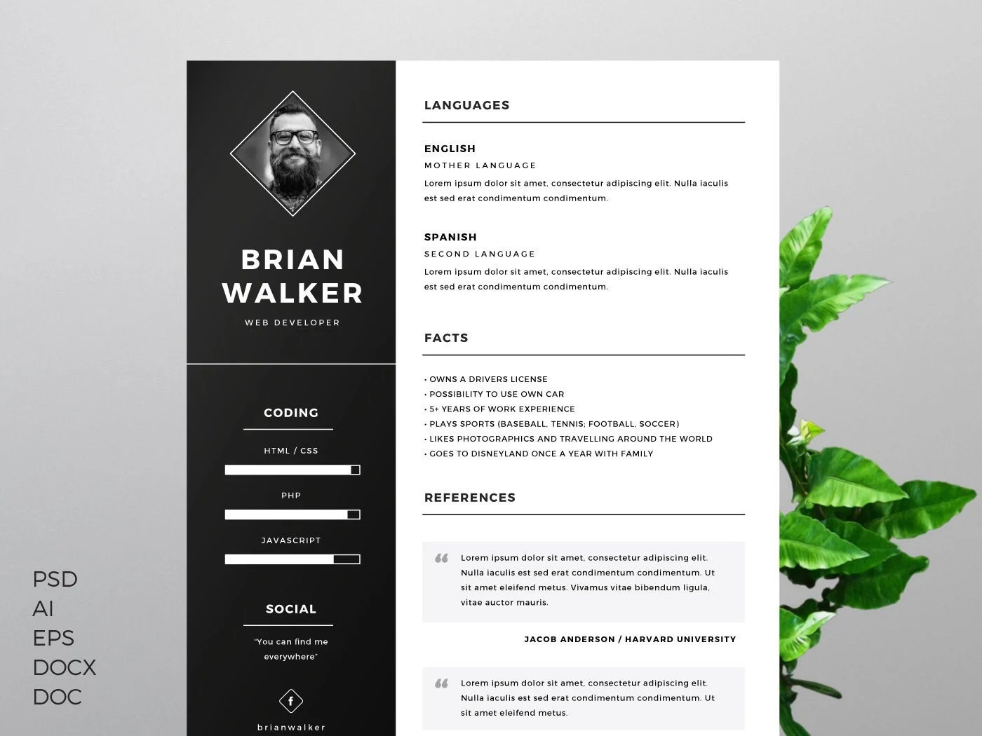 professional one page resume psd template professional one page