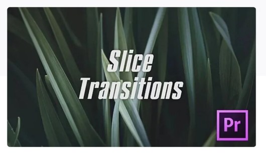 slice transition premiere pro template