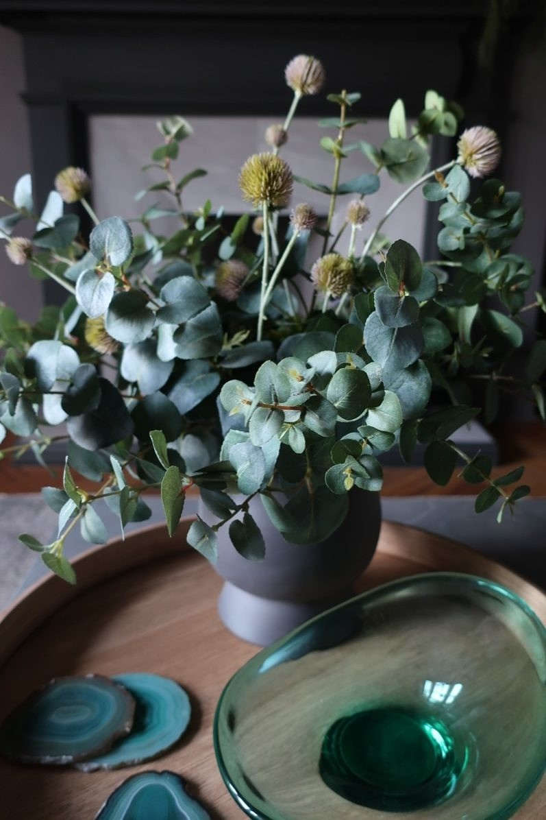 Eucalyptus and Thistle