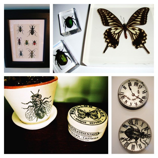 Entomology Homewares Rory Dobner
