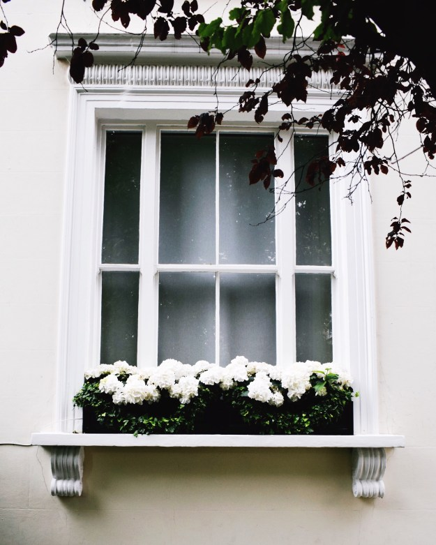 prettycitylondon white hydrangeas windowbox kensington