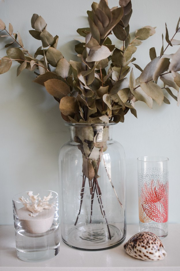 Natural history decor coral, eucalyptus, shells, curios. styling nature interior design