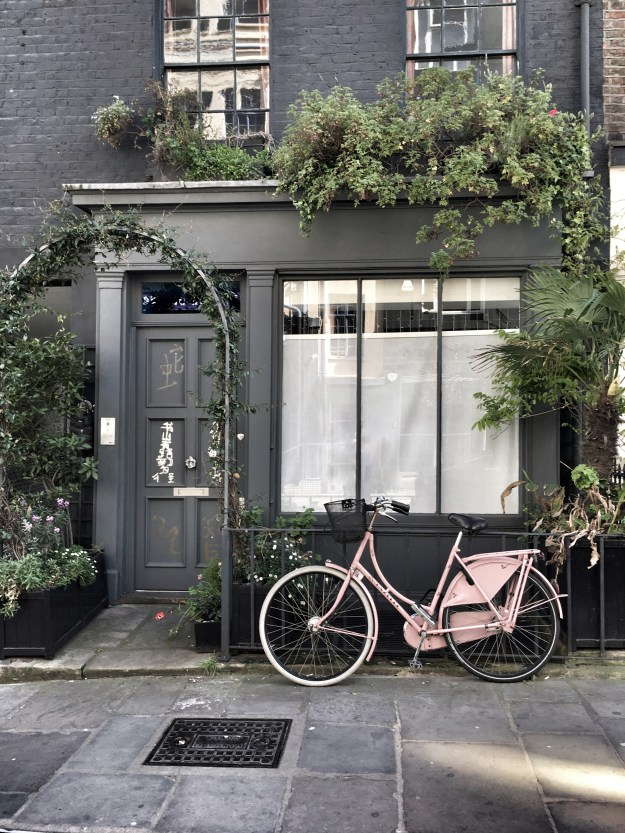 Botanical pink bicycle mews house Fitzrovia london, summer pretty city, house painted black