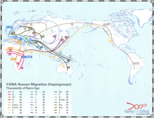 y-dna-human-migration-haplogrups