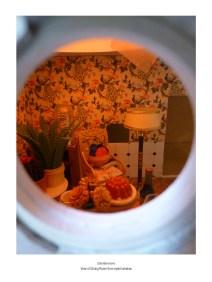 dining room eyelet window