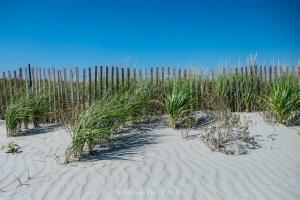 Beach in Newport, Rhode Island