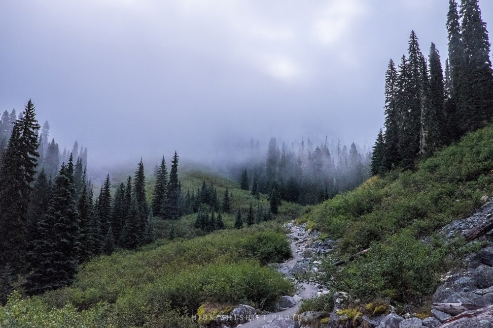 Fog descending onto us as we hiked up to middle Joffre Lake