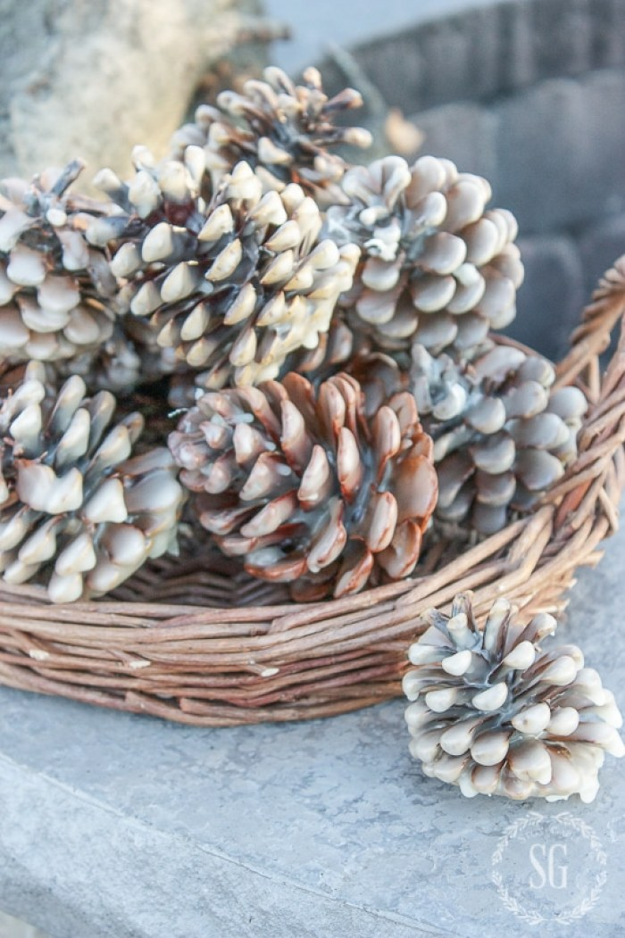 PINECONE FIRE STARTERS-at-fire pit--stonegableblog