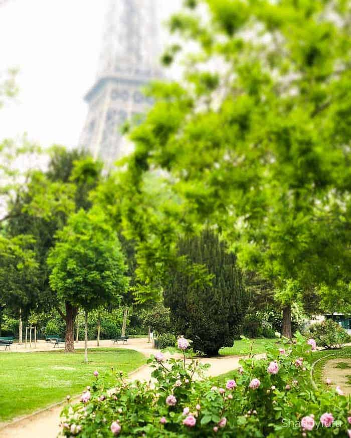 Paris Travel To Consider For The Future