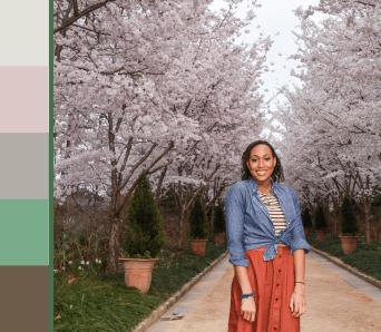 Cherry Blossom Color Palette - Travel Palette
