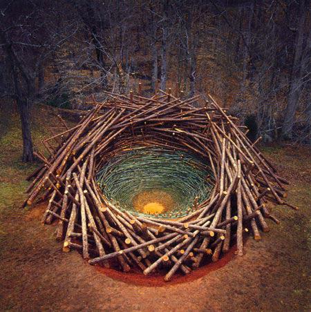 Clemson Clay Nest Natural Architecture 2005
