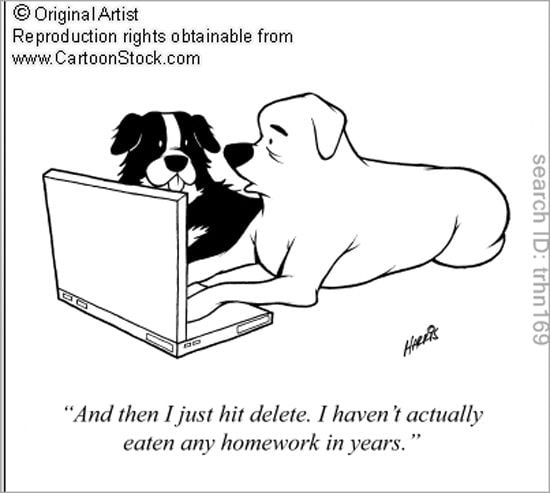 Homework cartoon