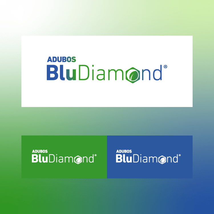 BluDiamond - branding