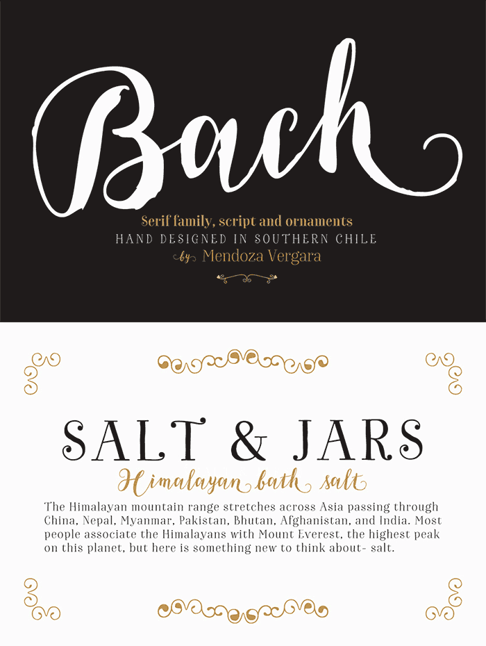 Bach Complete Family By Los Andes Type This Of Fonts Includes Beautiful Brush