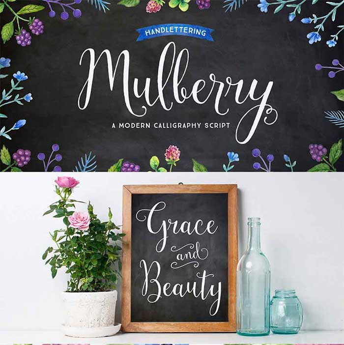 Mulberry Script Pro is part of the 15 font families for $15 bundle!