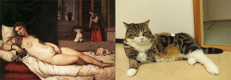 373 The Copycats: Cats Imitating Famous Works Of Art