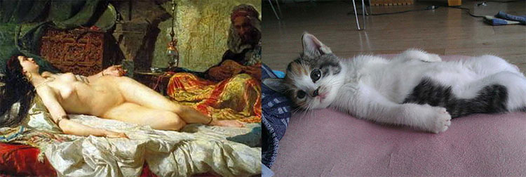913 The Copycats: Cats Imitating Famous Works Of Art