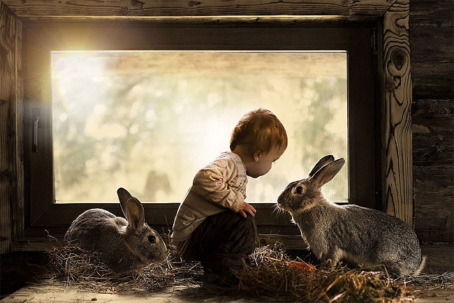 1190 Mothers Intimate Photographs Capture Her Sons Special Bond with Animals