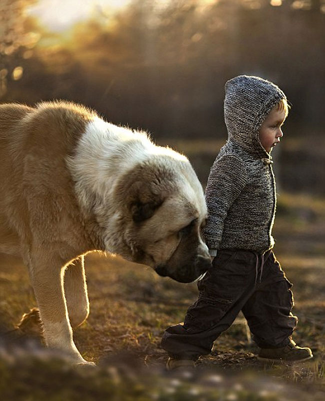 4108 Mothers Intimate Photographs Capture Her Sons Special Bond with Animals