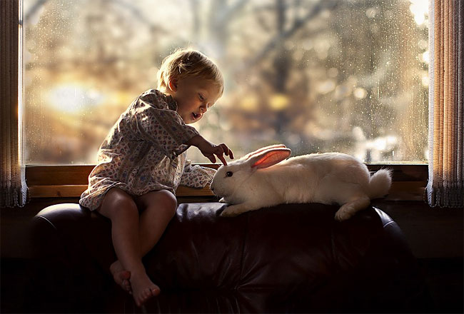 766 Mothers Intimate Photographs Capture Her Sons Special Bond with Animals