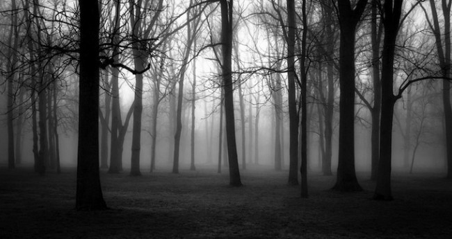 Derek Toye3 650x345 Black and White Landscapes by Derek Toye